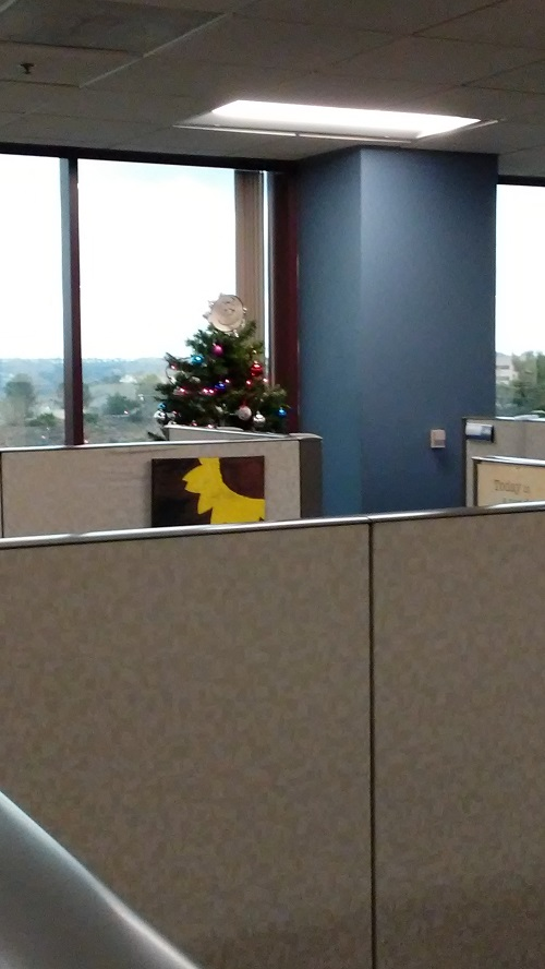 The Five Christmas Trees at My WorkPlace