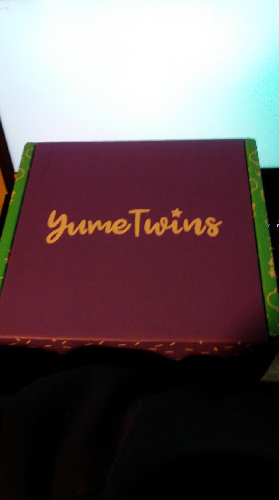 YumeTwins – November 2018 (TwinklingTransformation)